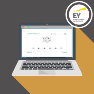 Ernst & Young Aptitude Test Practice Questions 2021 2022